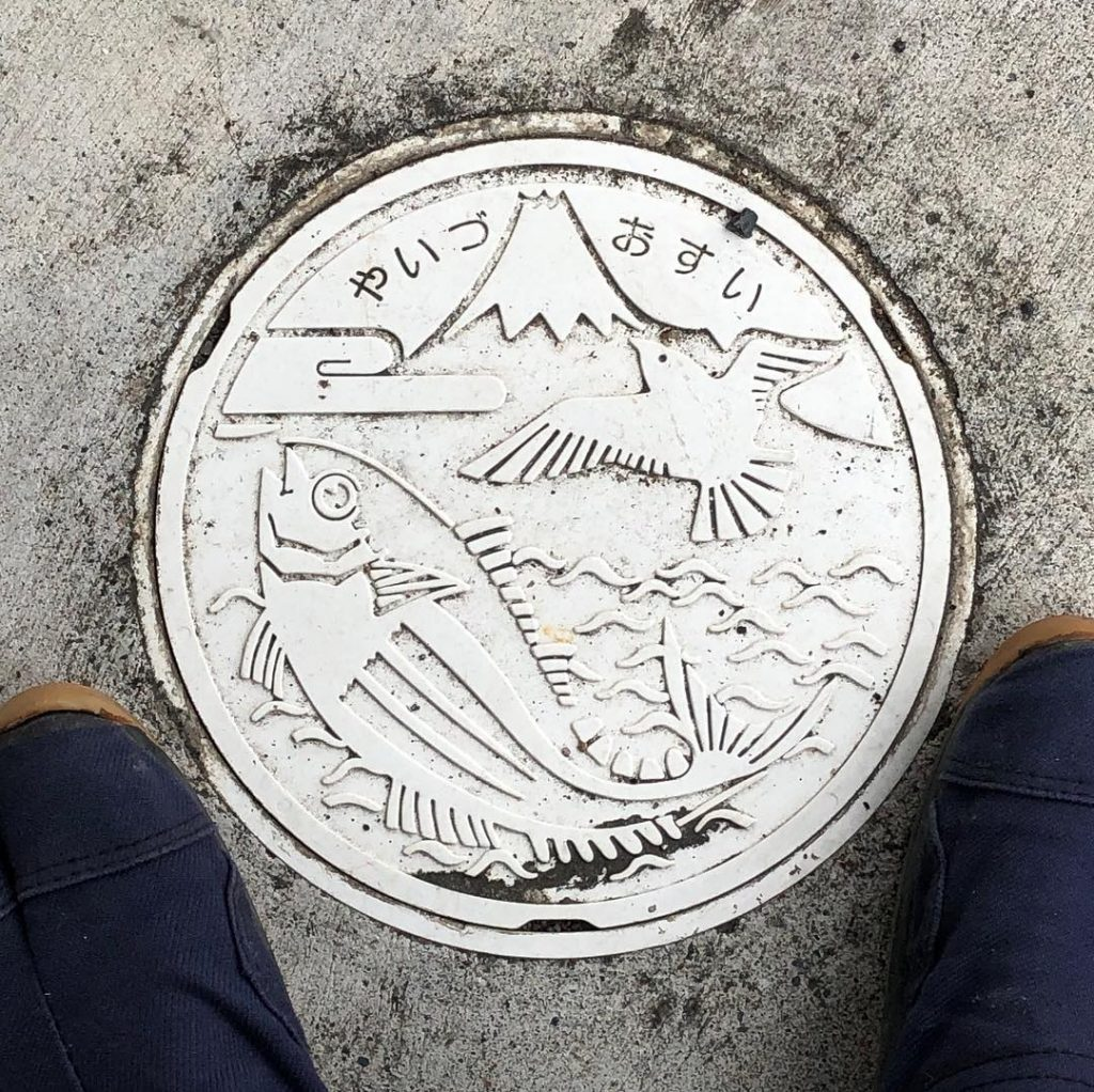 富士山人孔蓋_焼津市鳥與跳躍的鰹魚