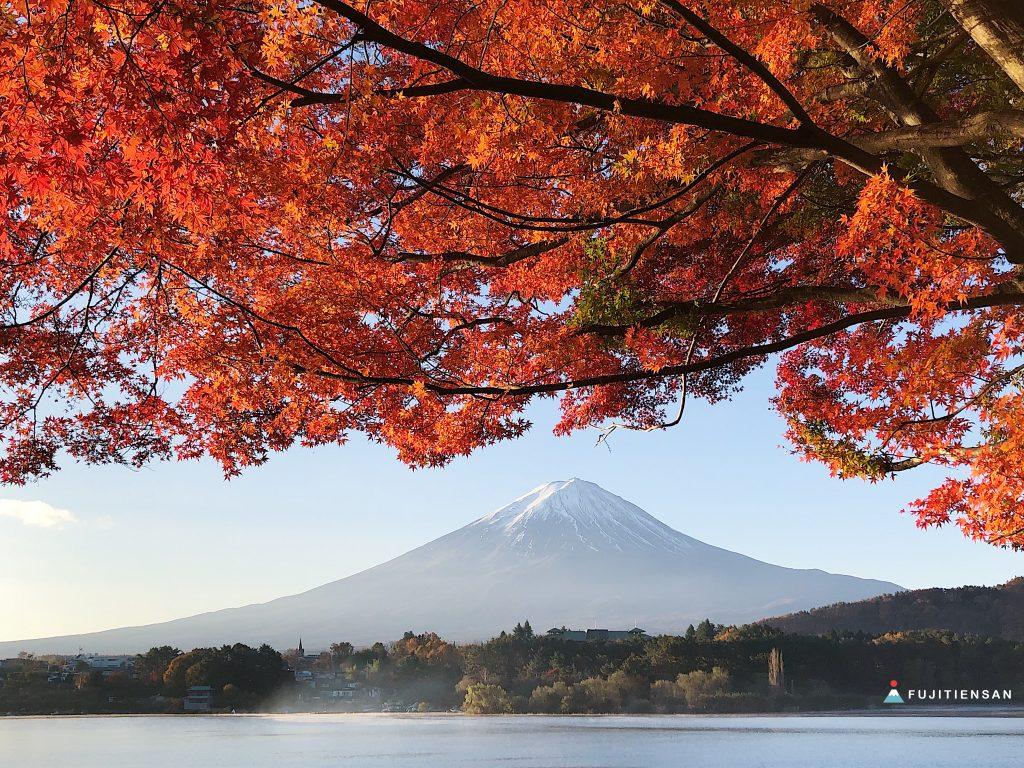 河口湖紅葉祭富士山留守ヶ岩