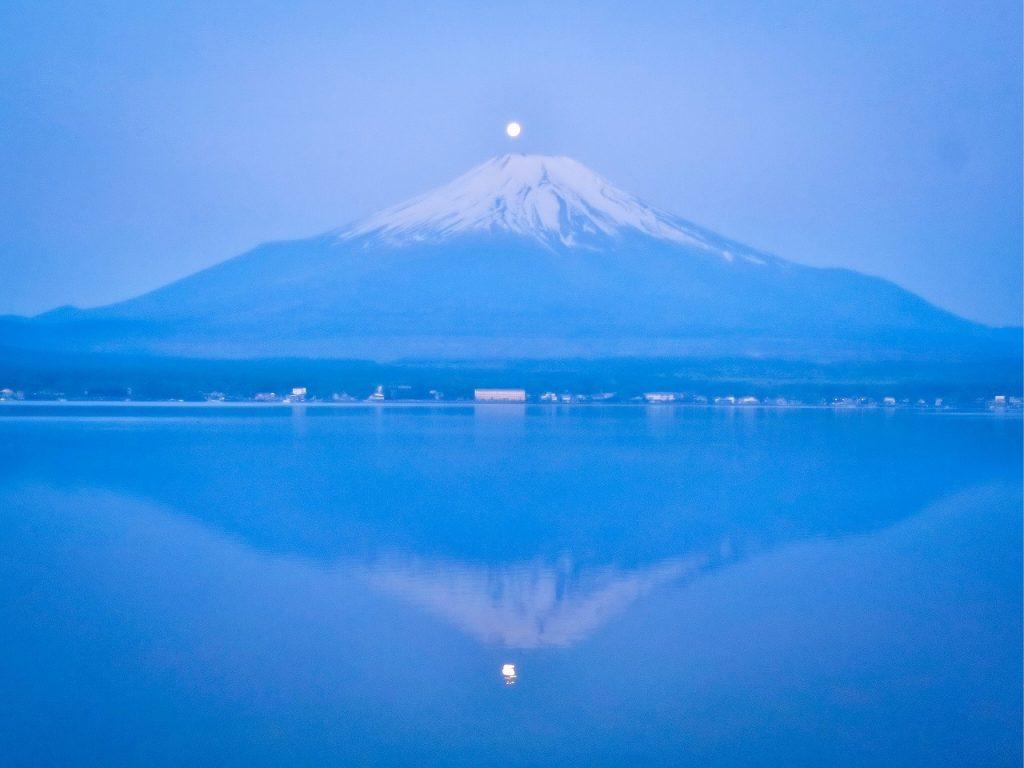 雙珍珠富士