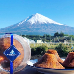 富士山型費南雪_MONT SAINT FUJI